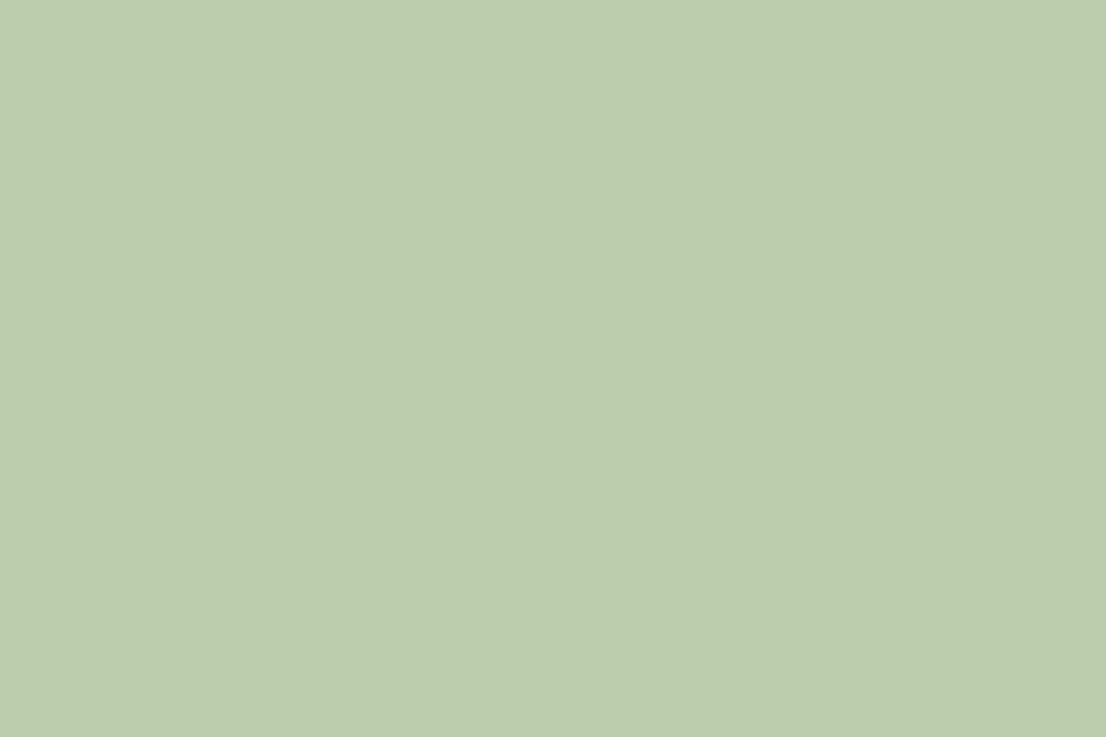 Эмаль RAL 6019 Пастельно-зеленая