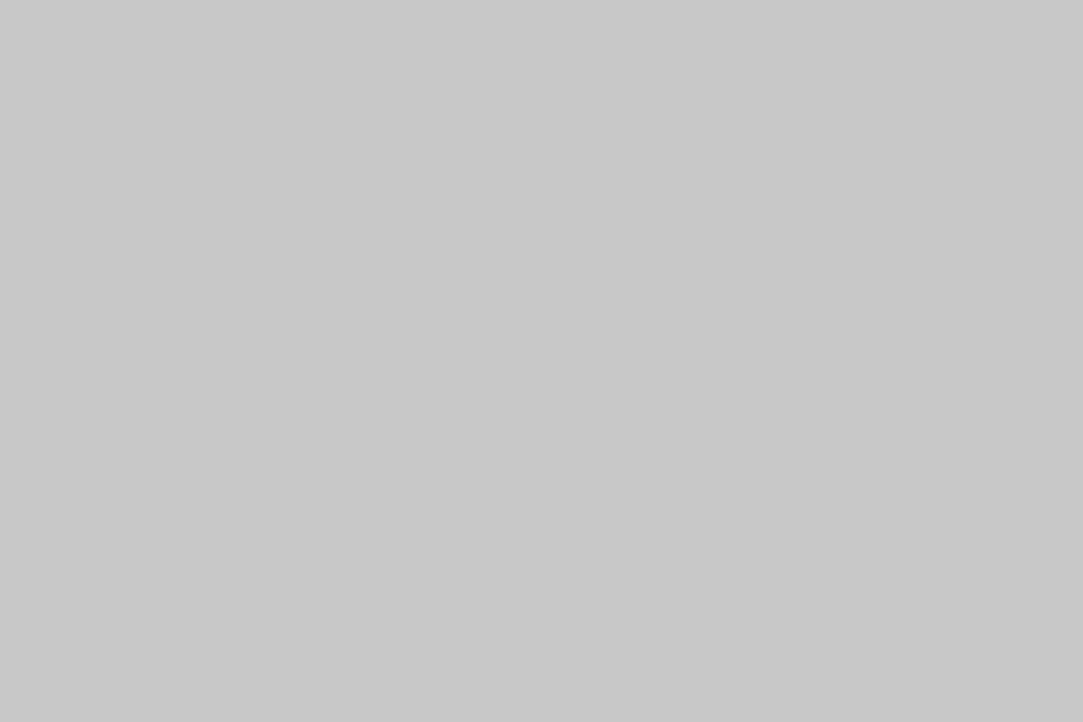 Эмаль RAL 7047 Светло-серая
